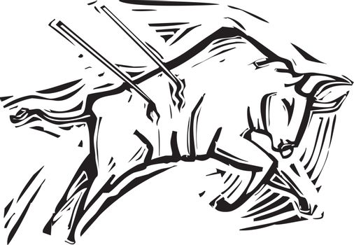 Woodcut style image of a charging bull in a bullfight.