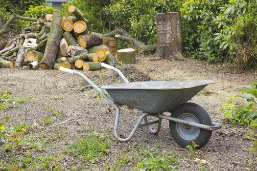 firewood in the garden