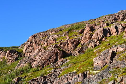 Tundra and hill
