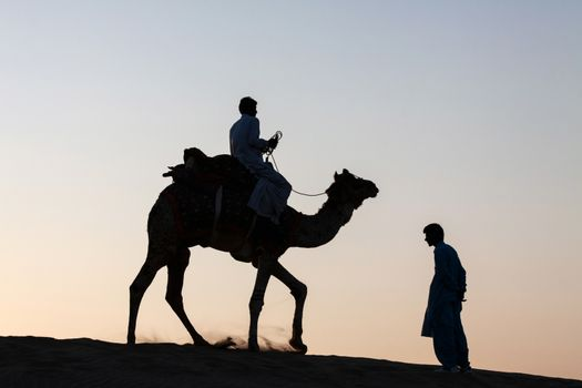 Single camel rider and person standing silhouetted dusk twilight