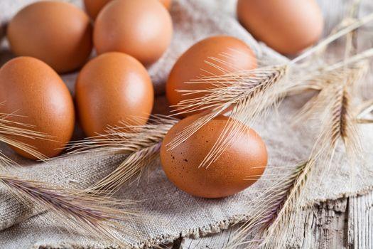fresh brown eggs and wheat ears