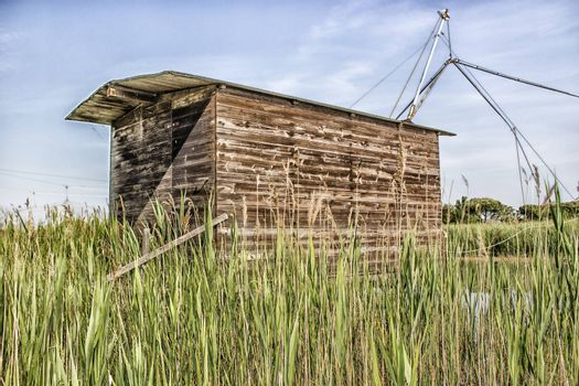 Fishing shack on channels to Adriatic sea among canes and pines in Italian seaside