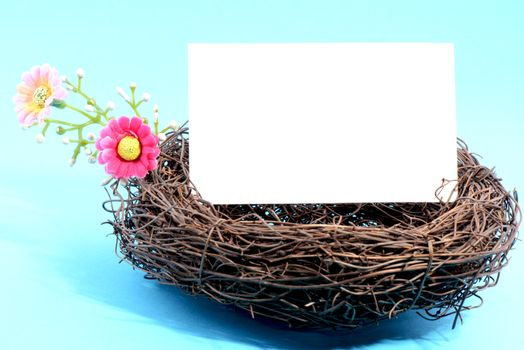 Nest with a blank white card on a blue background
