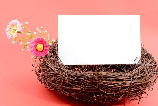 Nest with a blank white card on a pink background