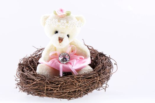 Nest with a Teddy Bear on a white background