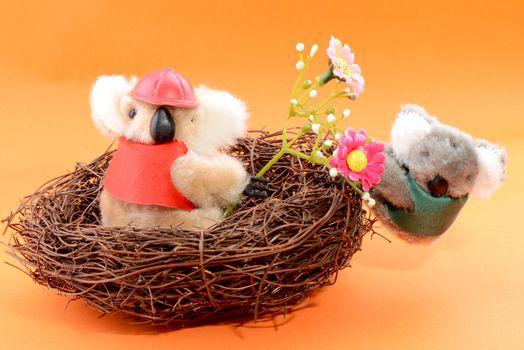 Nest with two Toy Koala on an orange background