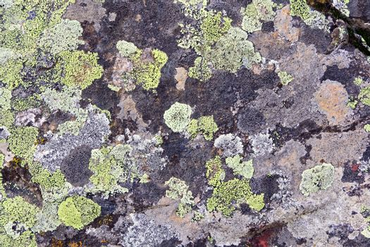 Photo of background colorful roughness gritty texture