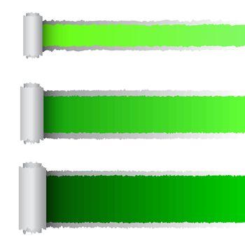 Vector tear paper in green color, eps10 illustration