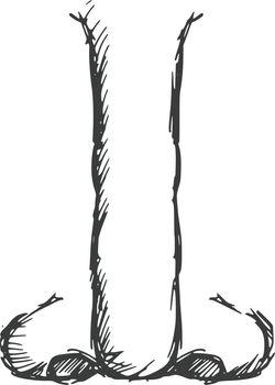 hand drawn, sketch, cartoon illustration of nose