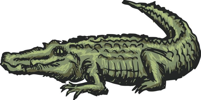 hand drawn, sketch, cartoon illustration of crocodile