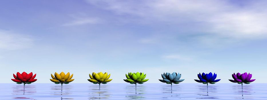 Lily flowers with chakra colors upon water by day sky