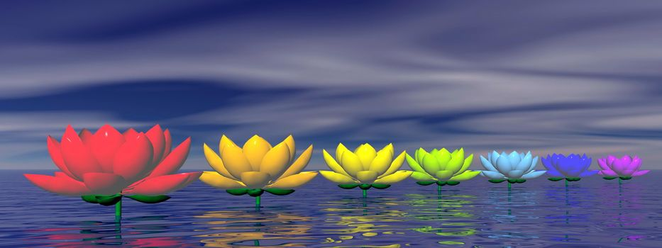 Lily flowers with chakra colors upon water by night