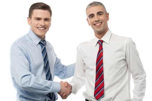 Handsome young executives shaking hands