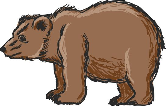 hand drawn, sketch, cartoon illustration of bear