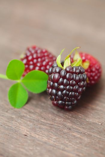 three juicy blackberries on a wooden surface