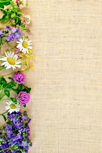 Frame of wild flowers on sackcloth 2