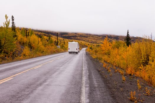 Camper van drives on highway with autumn or fall colorful yellow foliage of boreal forest taiga of yukon Territory, Canada