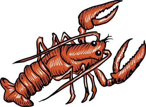 hand drawn, sketch, cartoon illustration of lobster