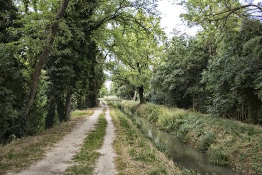 Walking among trees and plants along a water channel in Italian countryside