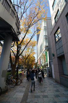 TOKYO - NOVEMBER 24: People on Omotesando Street on November 24.