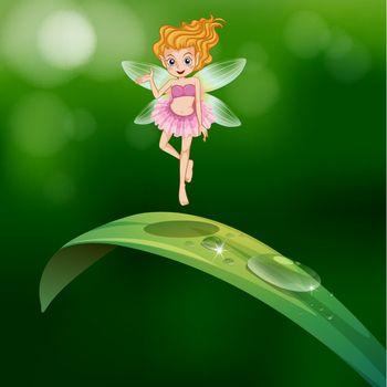 A beautiful fairy above an elongated green leaf