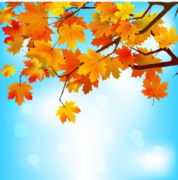 Red and yellow leaves against a bright blue sky. EPS 8 vector file included
