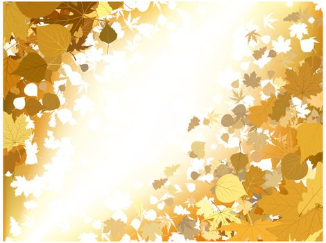 Autumn light background. EPS 8 vector file included