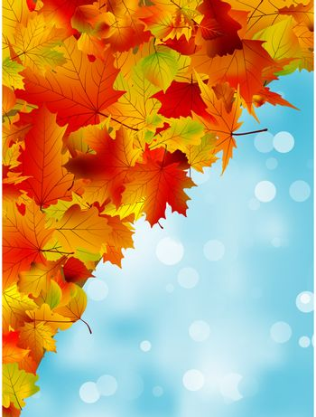 Autumn leaves on blue sky. Seasonal background. EPS 8 vector file included