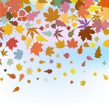 Beautiful autum leaves against sky. EPS 8 vector file included