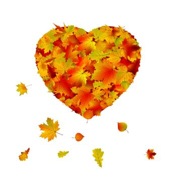 Heart shape made from autumn leaf. EPS 8 vector file included