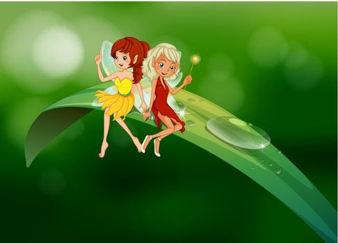 Two fairies sitting on an elongated leaf