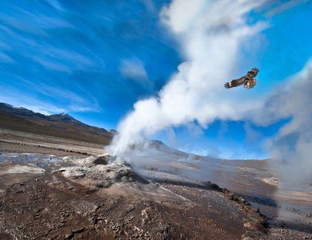 Valley of Geysers in the Atacama Desert