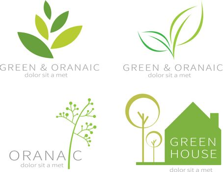Ecology green icon.Eco green leaf.