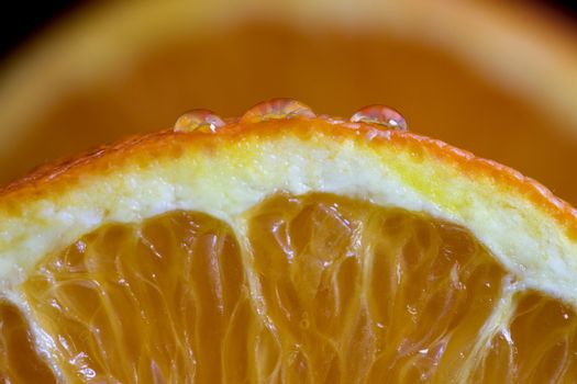 Macro Orange