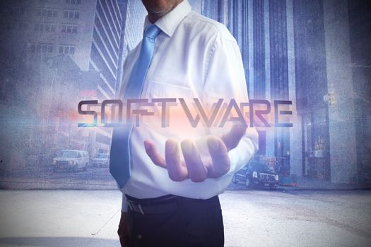 Businessman presenting the word software