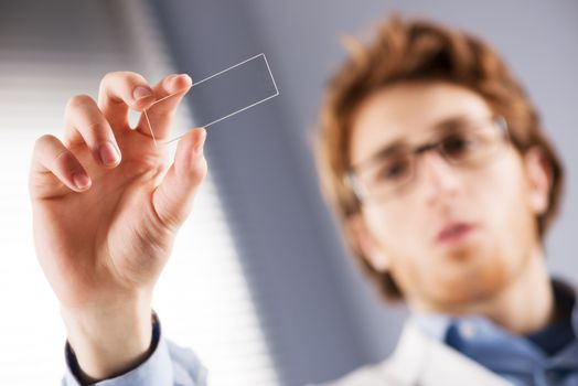 Young researcher holding a microscope glass slide in the laboratory.