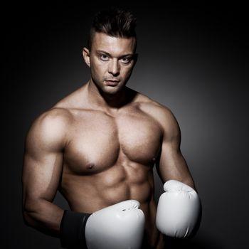Boxer posing on dark background looking at camera.