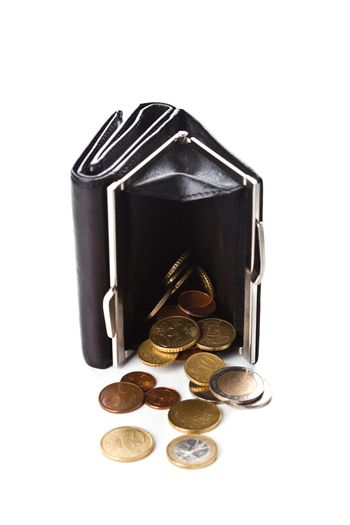 purse and euro coins