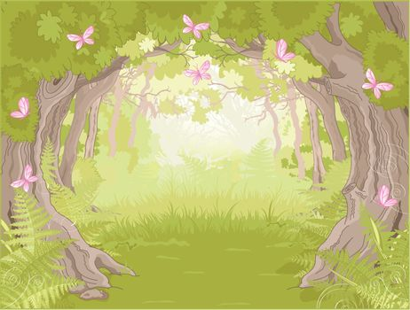 Glade in Magic forest