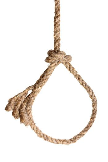 Rope noose on white