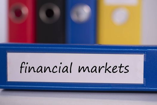 The word financial markets on blue business binder