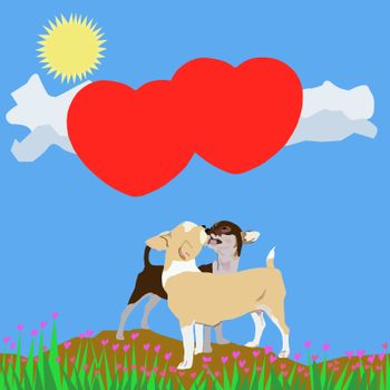 Kissing chihuahua background with blue sky