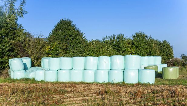 bale of straw in plastic after harvest to be protected from wetness