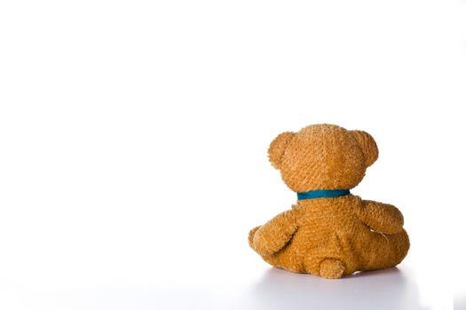 Lonely Little Bear