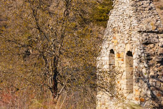 Old bell gable ruined along with a tree in a small village of the north west of Spain called Montealegre , Spain