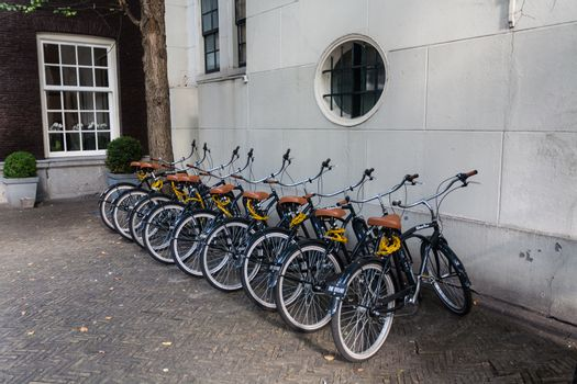 several identical bicycles parked in the street in Amsterdam