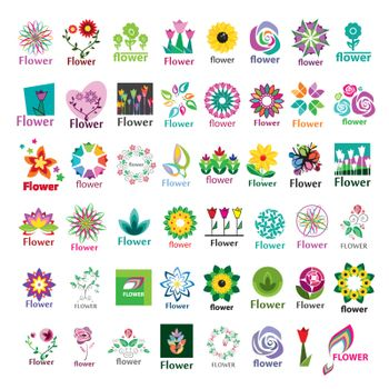large collection of vector floral logos