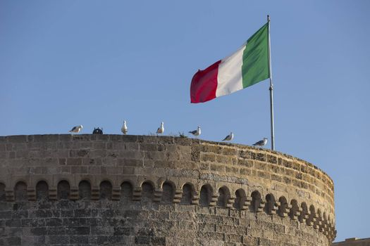 Seagulls (Larinae Rafinesque) standing near Italian flag blowing in the wind: red; white and green on ancient tower in Gallipoli (Le) in the Southern Italy
