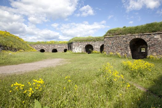 flowers in the summer on the fortification island Suomenlinna