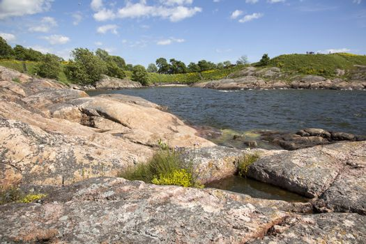 rocks and flowers on the fortification island of suomenlinna
